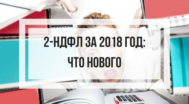 Форма 2 - НДФЛ в 2020 году: где и зачем требуют, как заполнить